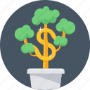 money plant, business, money, cash, earn money, making, growth