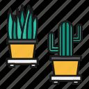 business, cactus, interior, office, plants icon