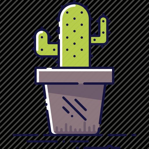 cactus, decoration, flora, floral, houseplant, plant, pot icon