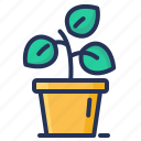 flower, growing, plant, pot icon