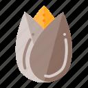 ferstival, germany, nut, oktoberfest, pistachio icon