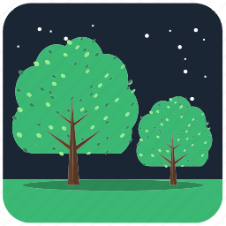 forest, nature, night, plant, stars, tree, trees icon