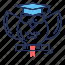 graduation, knowledge, owl, wisdom