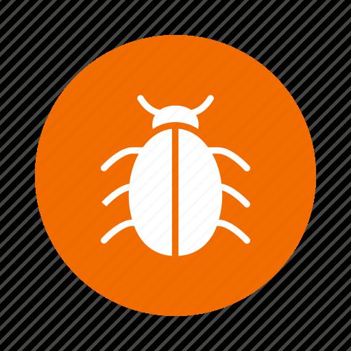 bug, insect, insert, ladybug, nature, trojan, virus icon