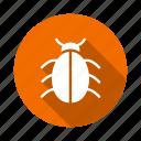 insert, trojan, ladybug, nature, virus, insect, bug