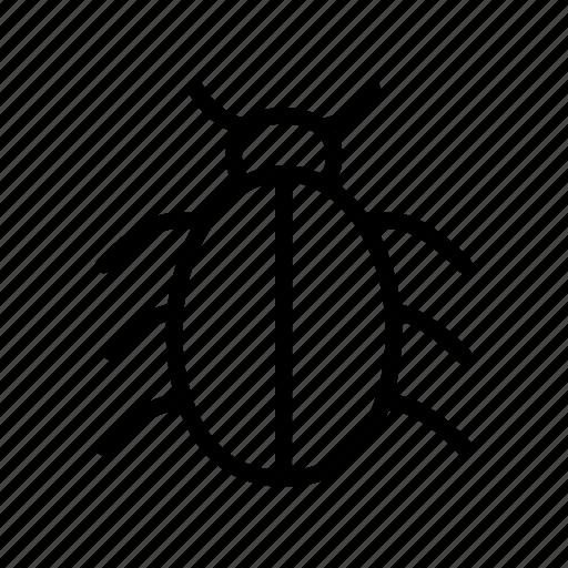 Bug, insect, malware, thread, virus icon