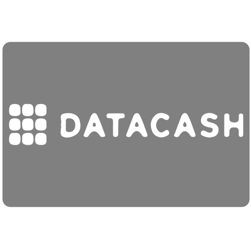 cash, data, datacash, methods, payment icon