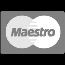 maestro, methods, payment icon