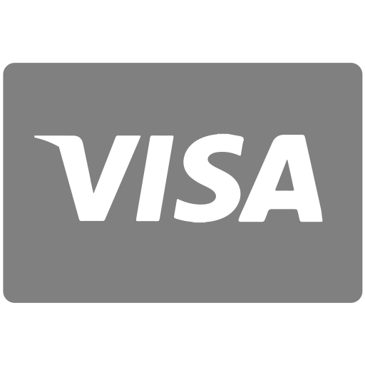 methods, payment, visa icon