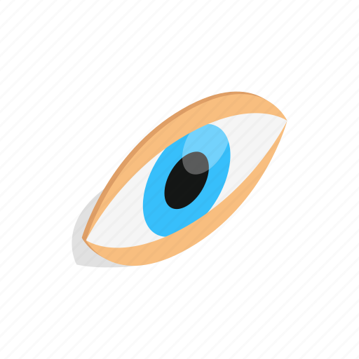 eyeball, eyes, human, isometric, look, view, vision icon