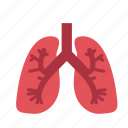 anatomy, health, healthcare, hospital, lung, medical, organ icon