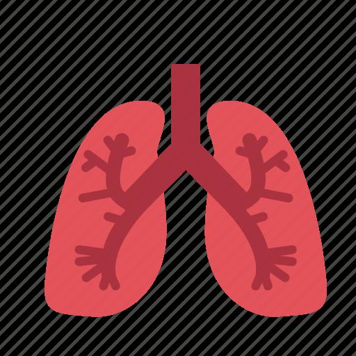 anatomy, health, healthcare, hospital, lung, medical, organ icon
