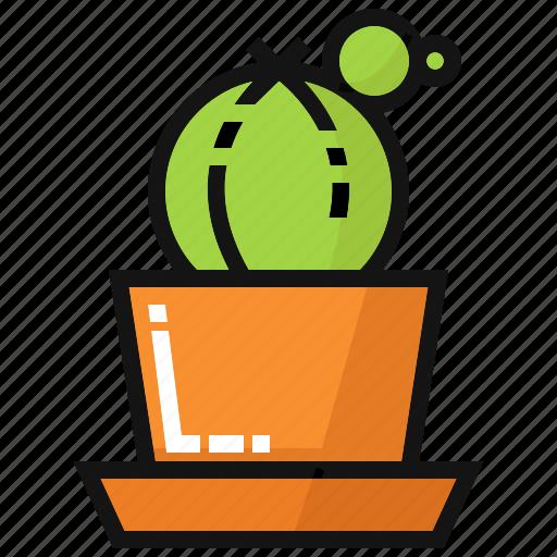 cactus, flower, garden, green, ornametal plants, plant, succulent icon