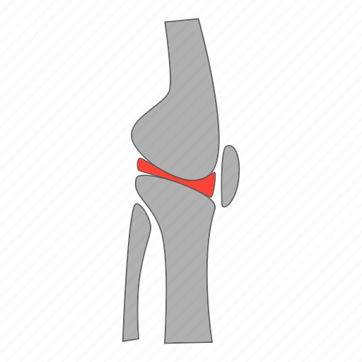 artificial, joint, knee, people icon