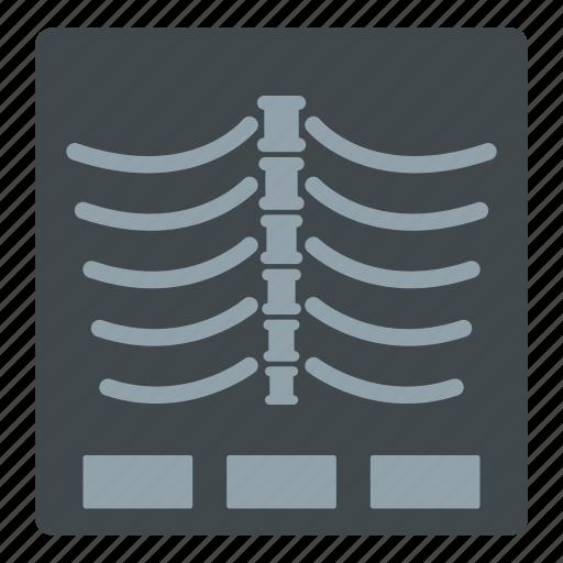 anatomical, anatomy, biology, body, ray, x, x-ray photo icon