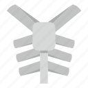 anatomy, biology, body, bone, human thorax, spine, thorax icon