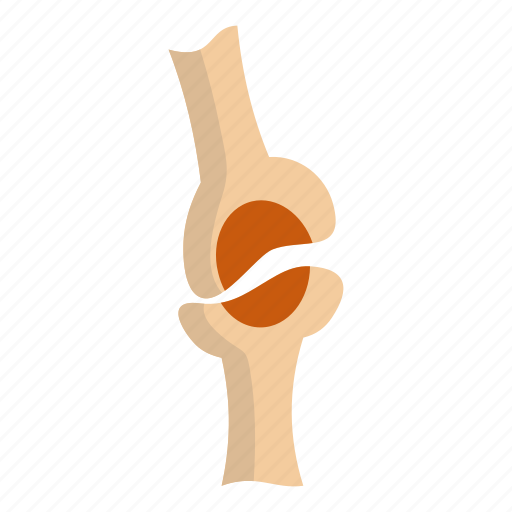 Bone, injury, joint, knee joint, orthopedic, osteoporosis, pain icon - Download on Iconfinder