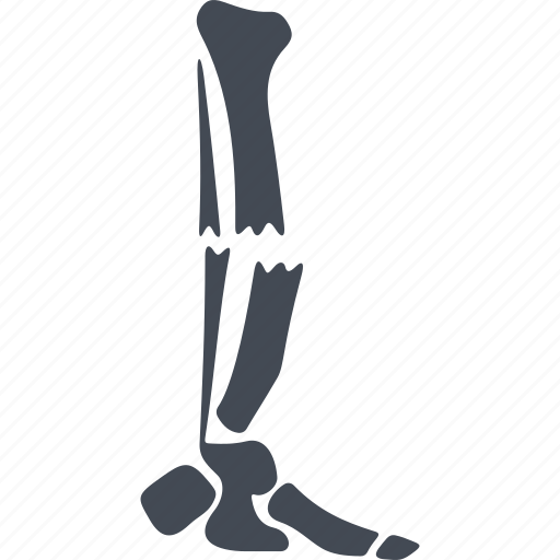 bone, broken, orthopedic, orthopedics icon