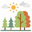 forest, nature, pine, tree, woods icon