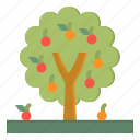 farming, fruit, growing, nature, tree icon