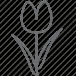 flower, nature, plant, tulip icon