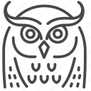 bird, birds of prey, eastern screech owl, eurasian eagle owl, night, owl