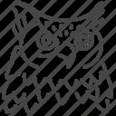 bird, birds of prey, eastern screech owl, eurasian eagle owl, long-eared owl, night, owl