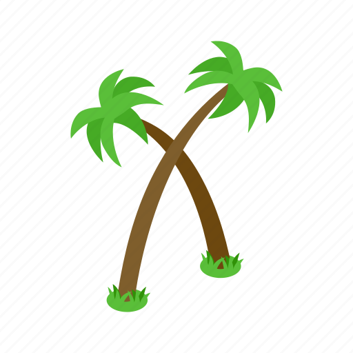beach, isometric, nature, palm, summer, tree, tropical icon