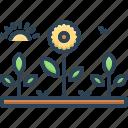 belvedere, flower, game preserve, garden, garth, nature, plant