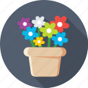 beauty, flowers, nature, plant, pot icon