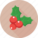 christmas, mistletoe, ornaments, plant, xmas icon