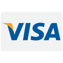 business, buy, card, cash, checkout, credit, donation, finance, financial, pay, payment, visa icon