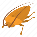 cartoon, cockroach, insect, logo, protection, virus, wing icon