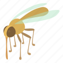 beetle, bite, bug, cartoon, insect, mosquito, nature icon