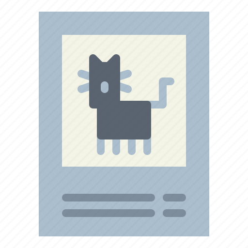 animals, cats, lost, missing, pet icon