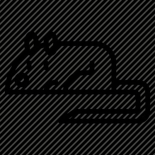 animal, lab, mouse, pet icon
