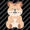 hamster, animal, pet