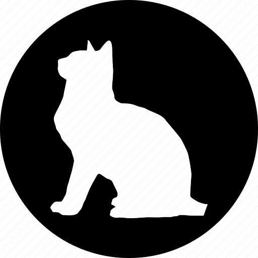 animal, animals, breed, domestic, mammal, pet icon