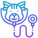 check, health, pet, vet, veterinarian icon