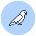 bird, parrot, pet, shop icon