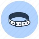 collar, dog, pet, shop icon
