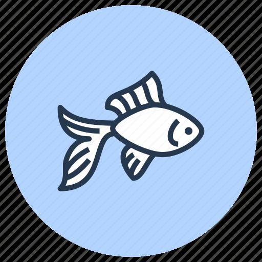 fish, gold, pet, shop icon
