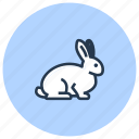 pet, rabbit, rodent, shop icon