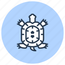 pet, reptile, shop, turtle icon
