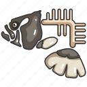 animal, bone, fish, fishbone, food, skeleton