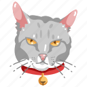 animal, cat, cute, kitten, pet, pets icon