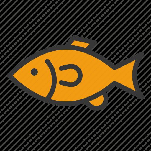 fish, golden fish, pet, shop icon