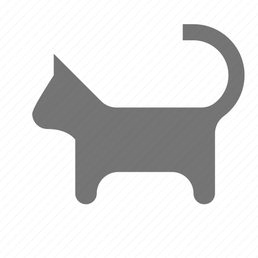 cat, feline, kitty icon