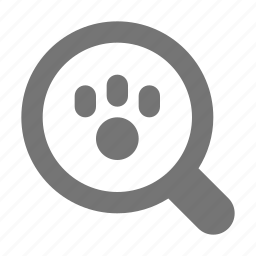 magnify, paw, search, view icon