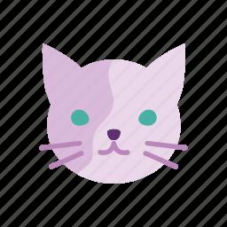 animal, cat, cute, kitten, pet, petshop icon